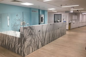 Our new outpatients